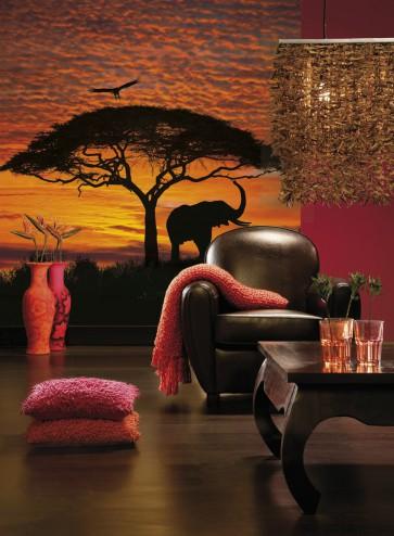 Fotomural African Sunset