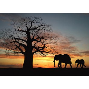 Fotomural Siluetas Africanas