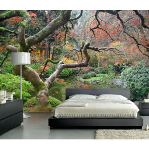 Fotomural bosque zen