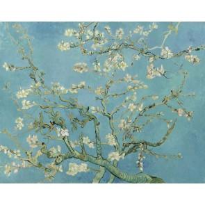 Fotomural Flor de almendro