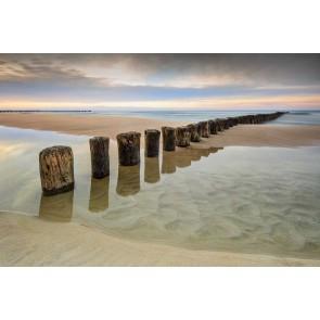 Fotomural Playa