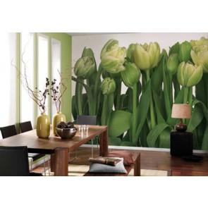 Fotomural Tulips