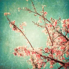 Fotomural Flor de cerezo vintage